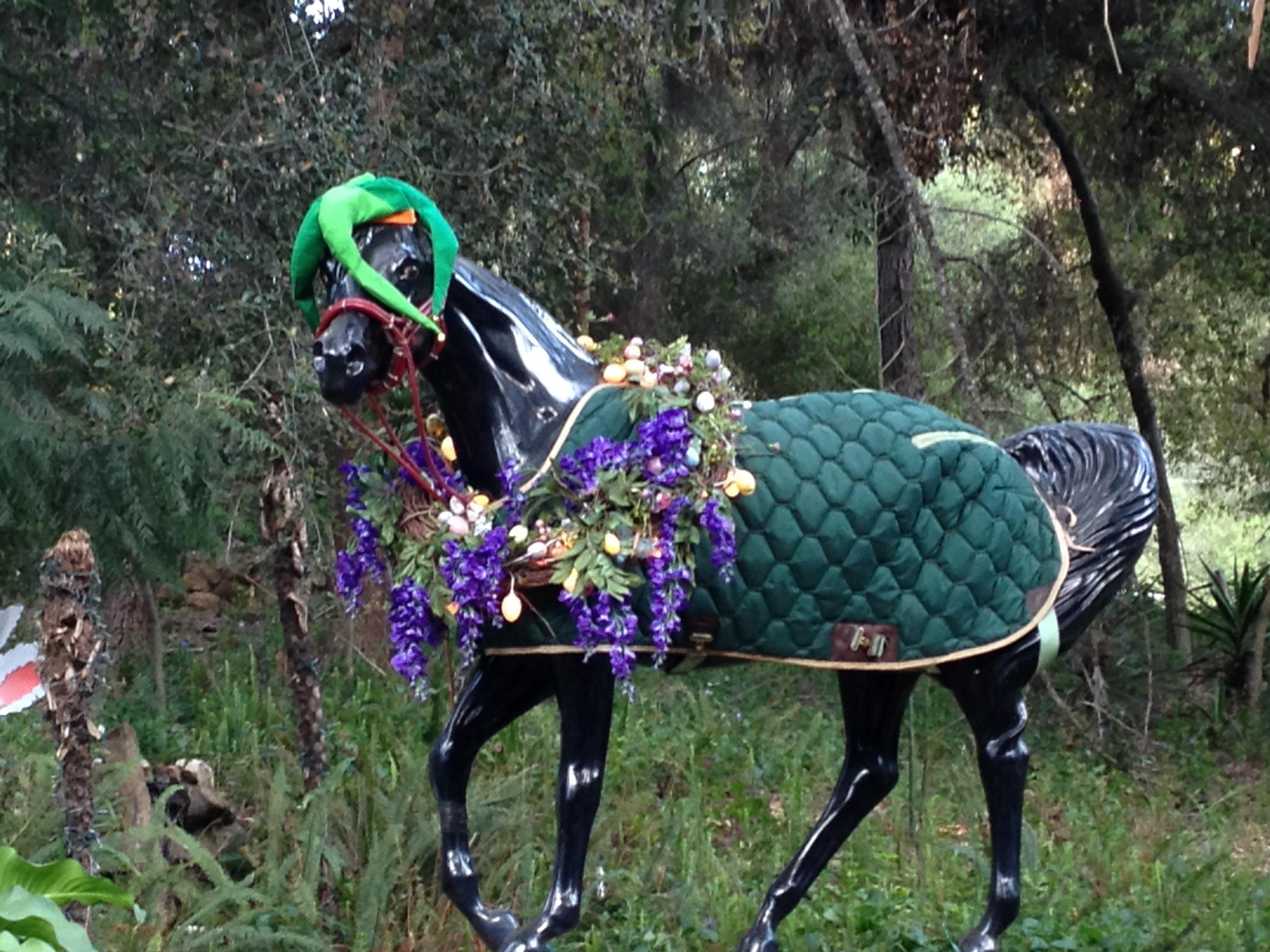 adorned horse